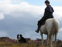 Equine Holidays in the Brecon beacons near Builth Wells in Wales